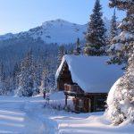 Dave Henry Lodge Valemount BC