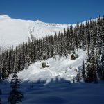 Swift Creek Winter Cabins